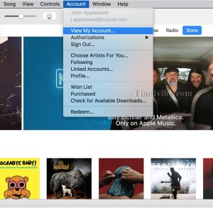 How to Check iTunes gift Card Purchase History Online