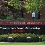 How to Apply For the Yousriya Loza-Sawiris Scholarship 2022/2023