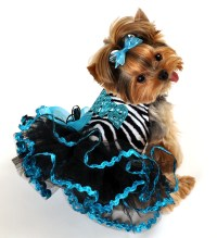 Designer Custom Made Dog Clothing