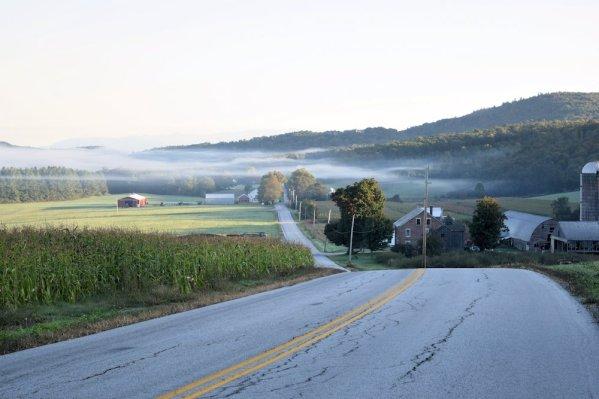 Autumn Fog East Road