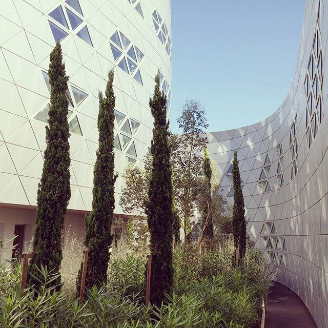 #montpellier #france #fassade #fasade #trangle #Architecture #fuksas #fuksasarchitecture #alucobond #reflection