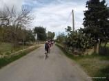 Es ging zurück - nur noch wenige Kilometer bis nach Alcudia