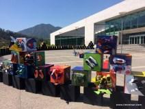 Wo ist die Puffbohne? Im Hintergrund das Rathaus von Santiago de Chile
