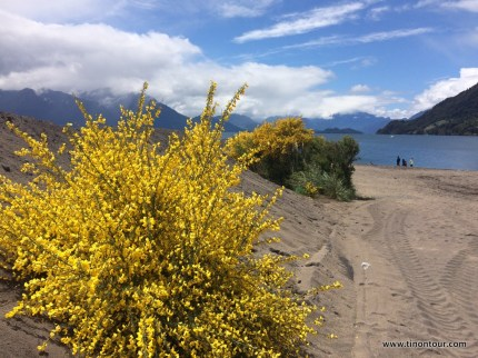 suedamerika-chile-2015-03-puerto-varas_27-IMG_0660