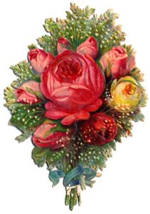 Tin Teddy Language of Flowers 2