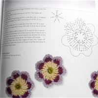 Tin Teddy Book Review 100 Flowers 3