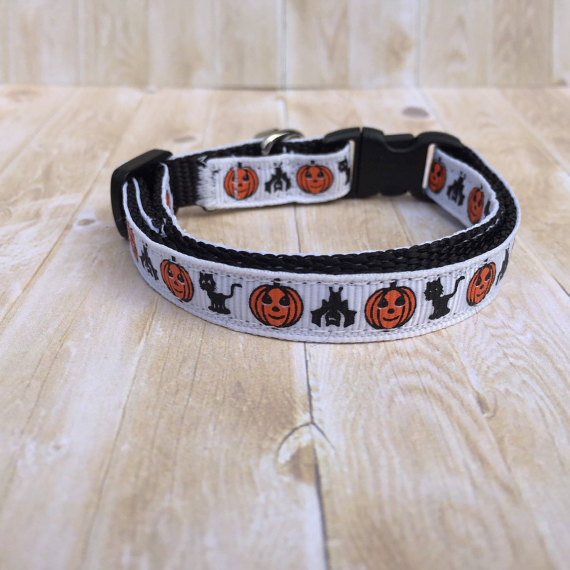 5 Tall Tails Hallowen Cat Collar