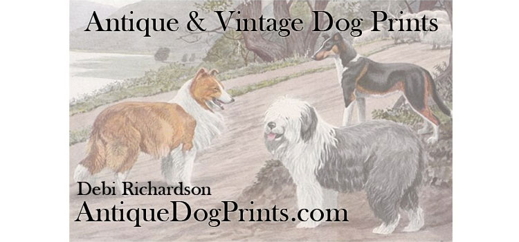 AntiqueDogPrints.com - antique and vintage dog prints
