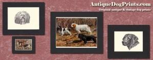 AntiqueDogPrints.com
