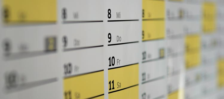 Use a calendar or planner to organize your social media campaigns