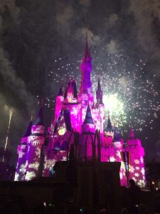 Disney Success Tips
