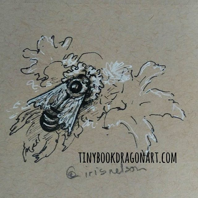 Trying to get my hands working again after rough day yesterday. Sticking with not-humans till my hands warm up. Inspired by @irisnelson_photo 's gorgeous photo. #bee #nature #naturestudy #art #tinyart #sketchbook #sketch #drawingpractice #drawing #nature #prismacolor #ink white #gellyroll #strathmore #tonedpaper #kidlitartist #illustration