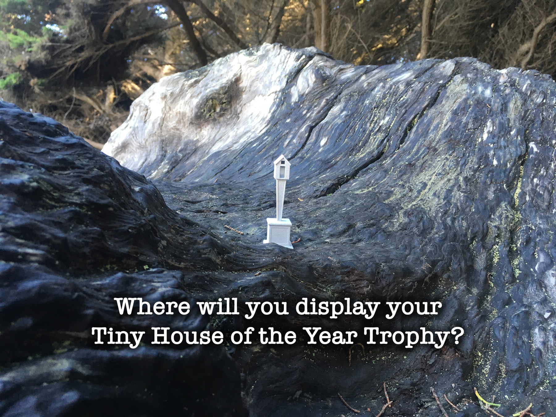 tiny-house-of-the-year-trophy-prototype-4
