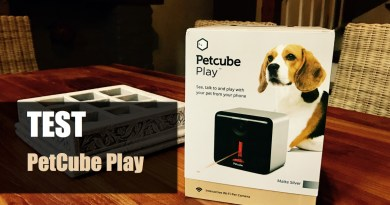 test-petcube-play-001