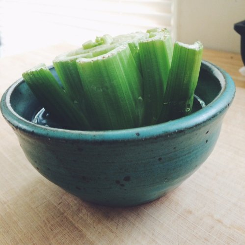 regrow plants kitchen scraps