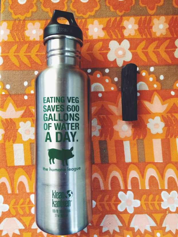 reusable water bottle