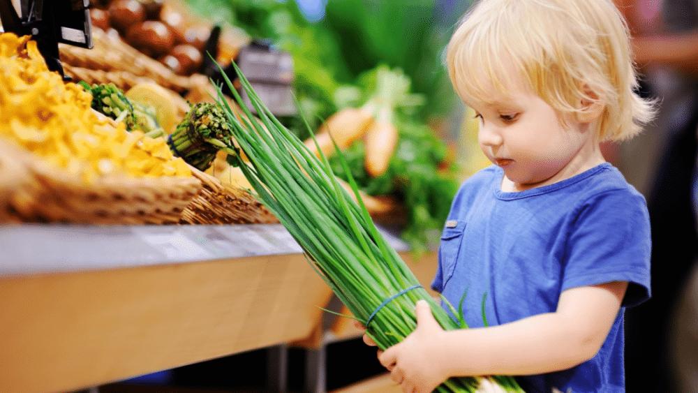 zero waste toddler snack ideas