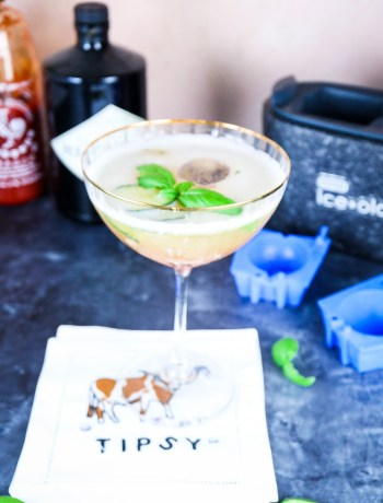 Spicy Cucumber Basil Gimlet