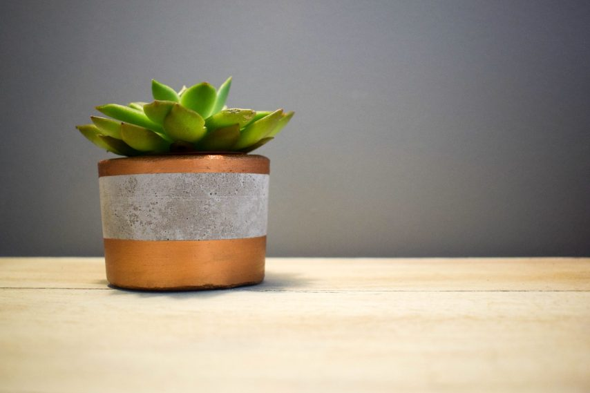 concrete planter kit - newly decorated