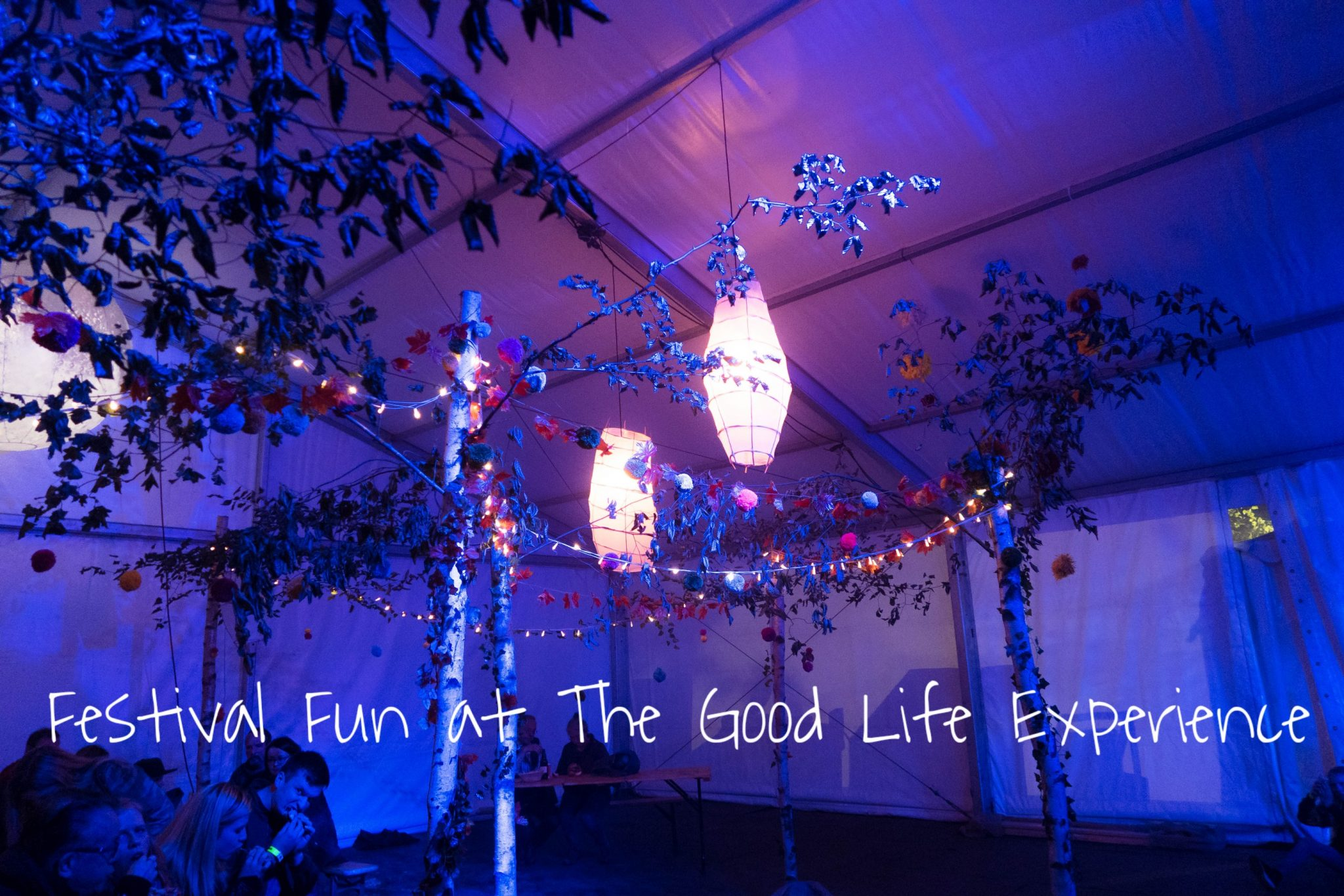 The Good Life Experience - blog post header