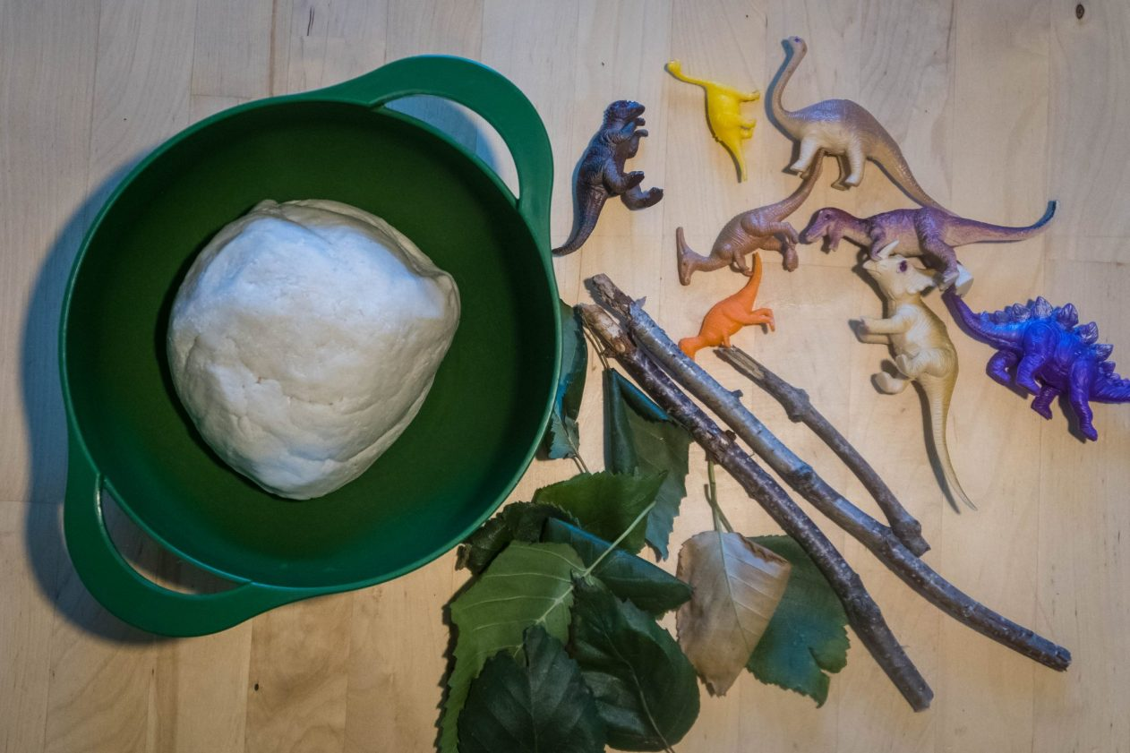 Make Your Own Dinosaur Fossils - what you need