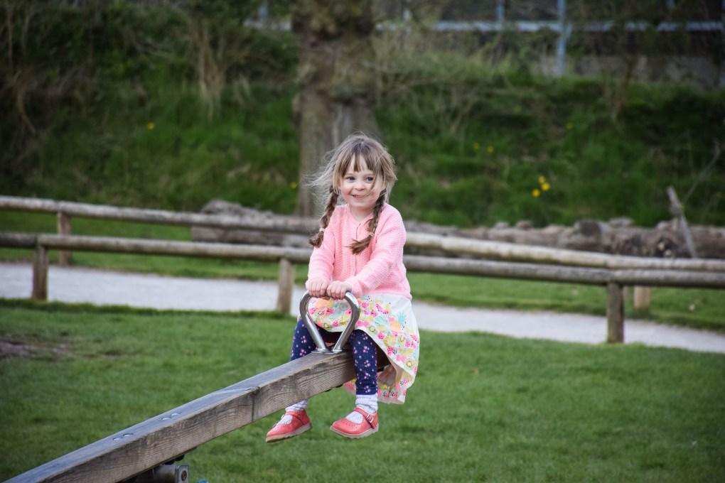 Playing in the adventure park at Monkey Forest