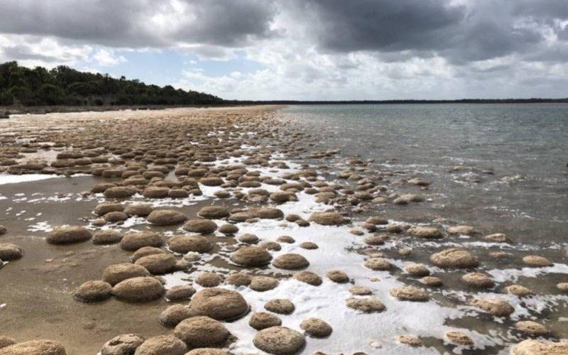 Tromboliti al Lago Clifton in Western Australia