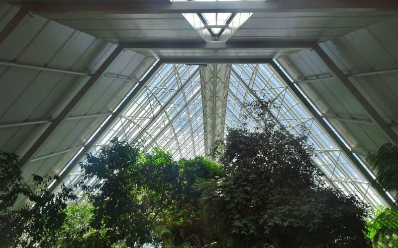 Soffitto interno in vetro e acciaio del Bicentennial Conservatory nel Giardino Botanico di Adelaide