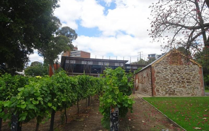 "Museo enologico australiano ""National Wine Centre of Australia"" ad Adelaide visto da fuori"