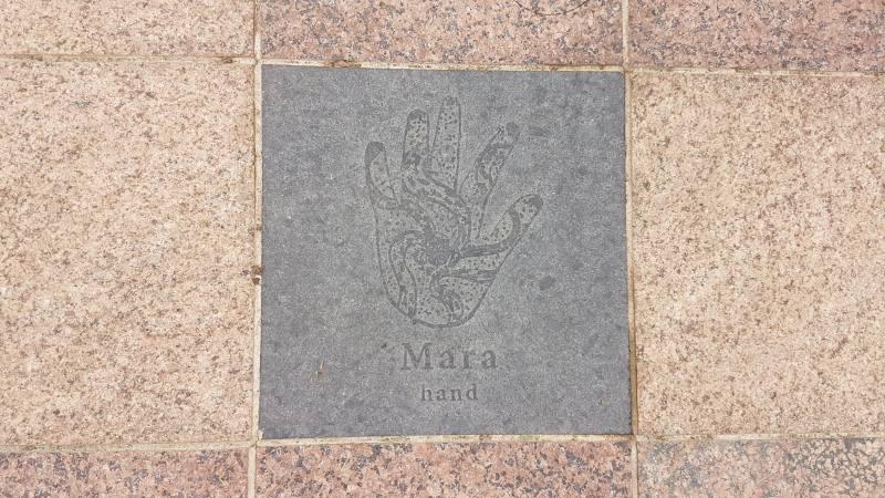 Piastrella aborigena nel pavimento di Victoria Square (Tarntanyangga) di Adelaide