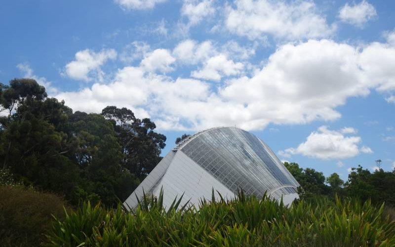 Struttura esterna in vetro e acciaio del Bicentennial Conservatory nel Giardino Botanico di Adelaide