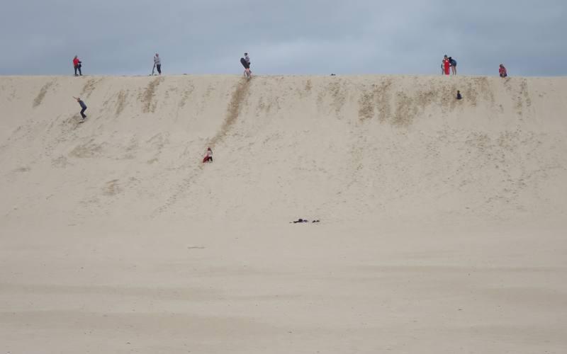 Dune del deserto Little Sahara di Kangaroo Island scende con il sandboarding
