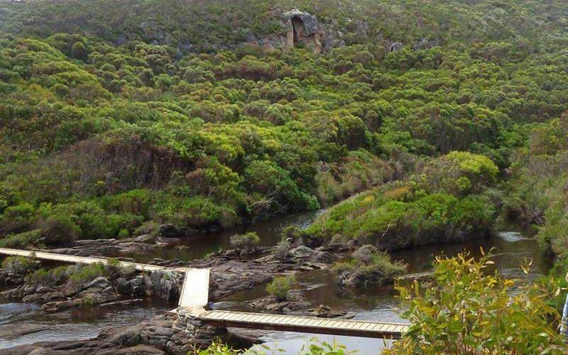 Pontile del percorso Snake Lagoon Hike a Kangaroo Island