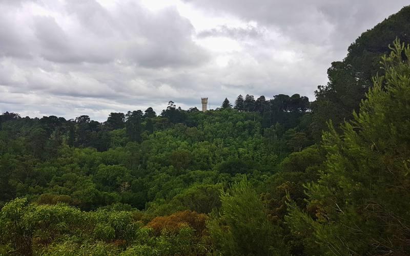 """Punto panoramico """"Centenary Tower"""" vista dal Mount Gambier"""