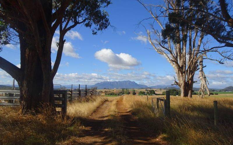 Paesaggio collinare e montagnoso del Nord della Tasmania, isola dell'Australia