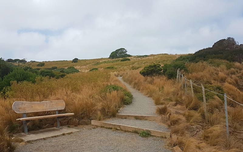 """Percorso sulla cima del promontorio """"The Nut"""" di Stanley, villaggio nel Nord della Tasmania"""