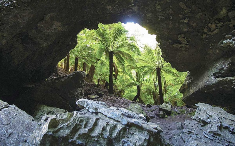 Arco naturale Trowutta Arch nella costa Nord-Est della Tasmania
