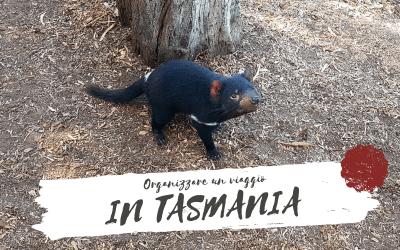 Come organizzare un VIAGGIO IN TASMANIA, un'isola tutta da scoprire