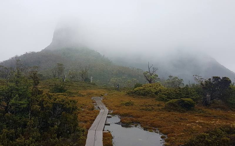 Nebbia e pioggia durante il trekking Overland Track in Tasmania
