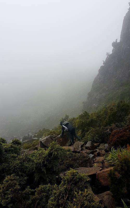"""Nebbia e pioggia durante la scalata al """"The Acropolis"""" nella Pine Valley dell'Overland Track"""