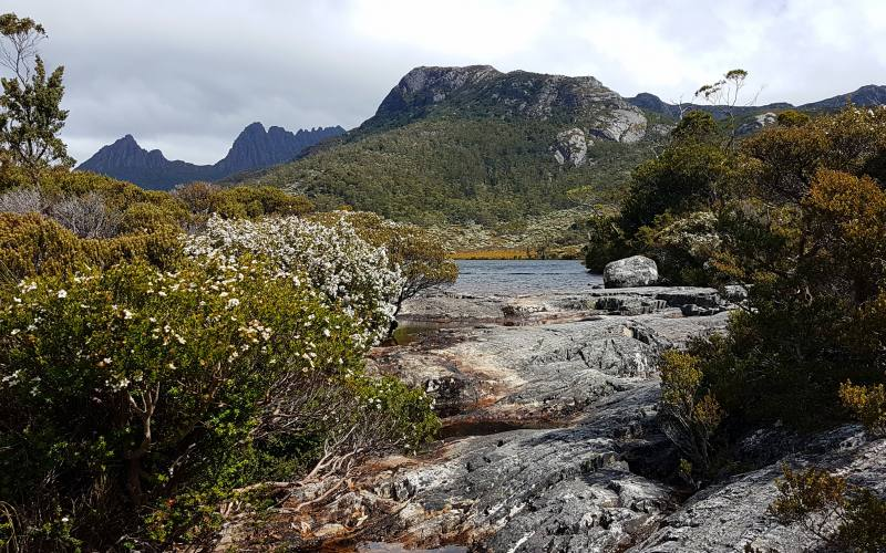 Lago Lake Lilla con vista Cradle Mountain in lontananza in Tasmania