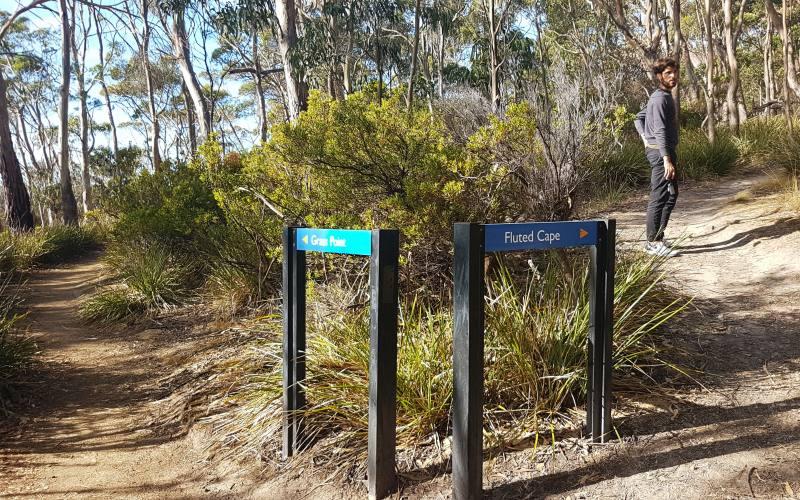 """Bivio per il percorso """"Grass Point"""" e per """"Fluted Cape"""" a Bruny Island in Tasmania"""