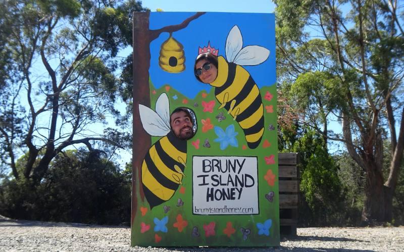 """Strane api al negozio artigianale di miele """"The Honey Pot"""" di Bruny Island in Tasmania"""