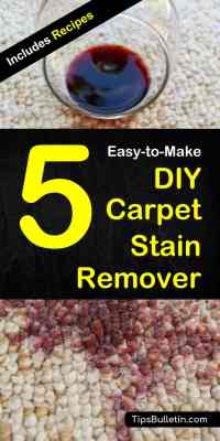 5 DIY Carpet Stain Remover, Cleaner and Deodorizer Recipes