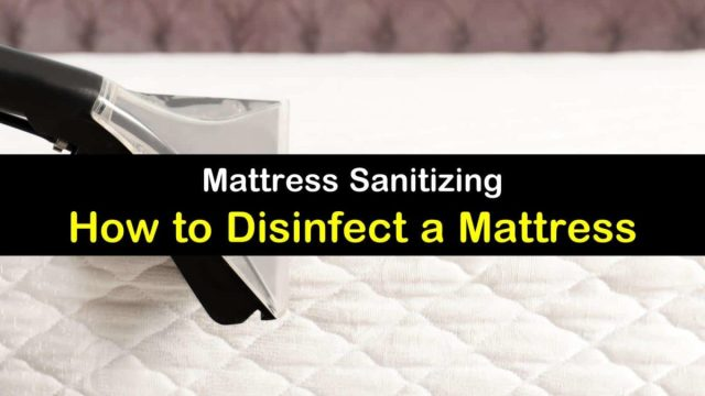 10 Clever Ways to Disinfect a Mattress