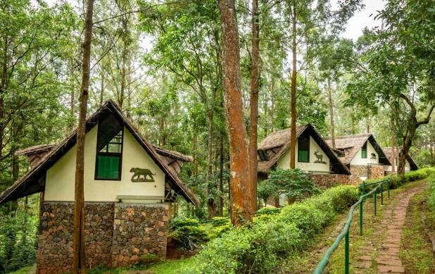 Gorukana Eco Wellness Retreat, BR Hills