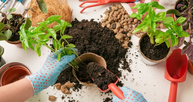 Organic gardening is much more than simply avoiding the use of chemicals in your garden. For many people, it is a vision of living using the laws of n