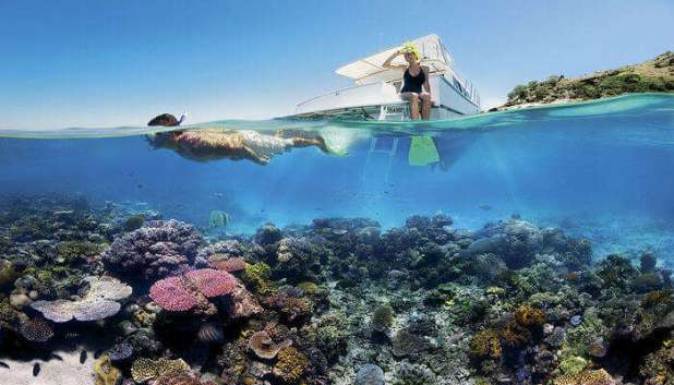 Swimming in the Great Barrier Reef