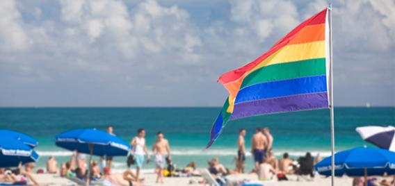 Gay single cruise lingo