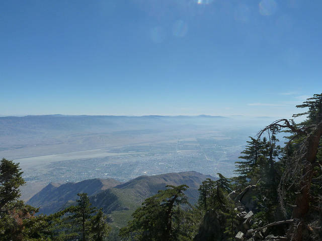 Palm Springs from Jacinto State Park